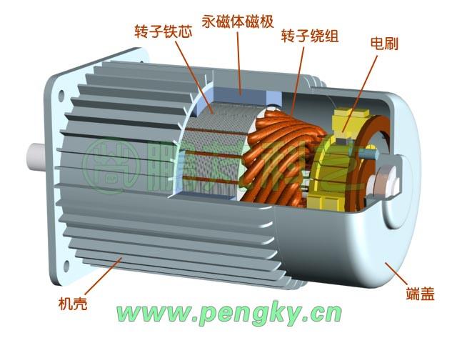 电机内部结构图实物图